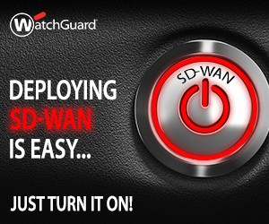 SD-WAN-Banner__Just_Turn_It_On_300x250
